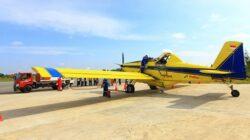 Buka Opsi Pailit, Kementerian BUMN Siapkan Pelita Air Gantikan Garuda